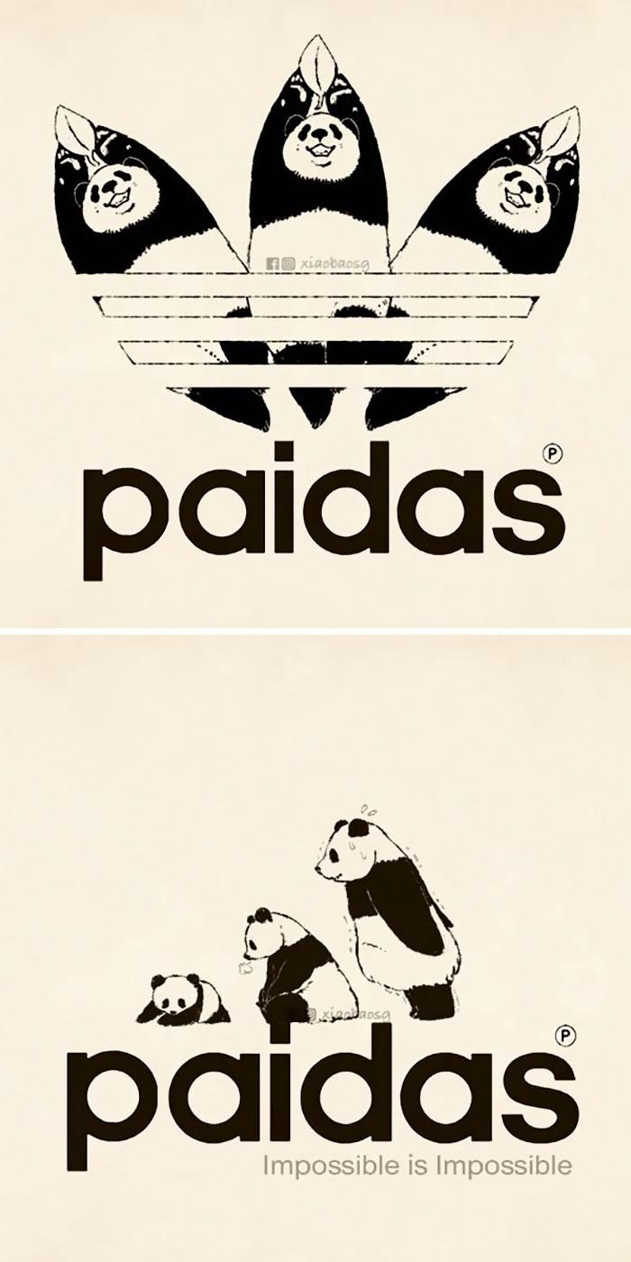 panda on adidas