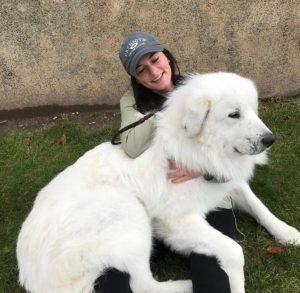 Big white doggy