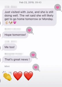 Woman Accidently Sends X-rated Snap to Family Group.