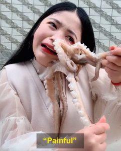 octopus caught her