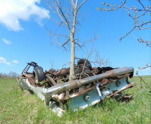 Nature is reclaiming an abandoned automobile.