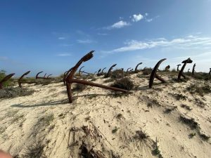 The wonderful anchor graveyard in Praia Do Barril, Portugal.