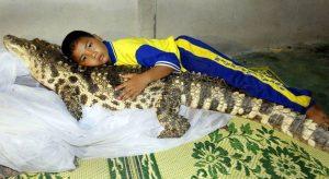 Strangest among strange pets.the pet crocodile