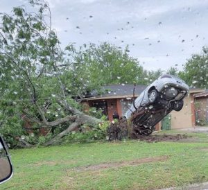 3. The tree which was knocked off by the storm lifted the car that was parked right on top of the tree roots.