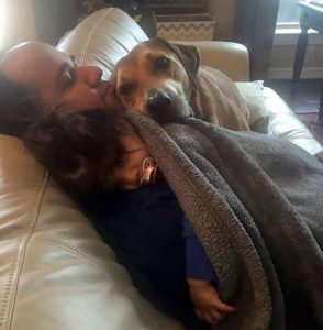 dogs know when the baby is sick
