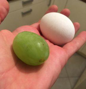 egg and grape of same size