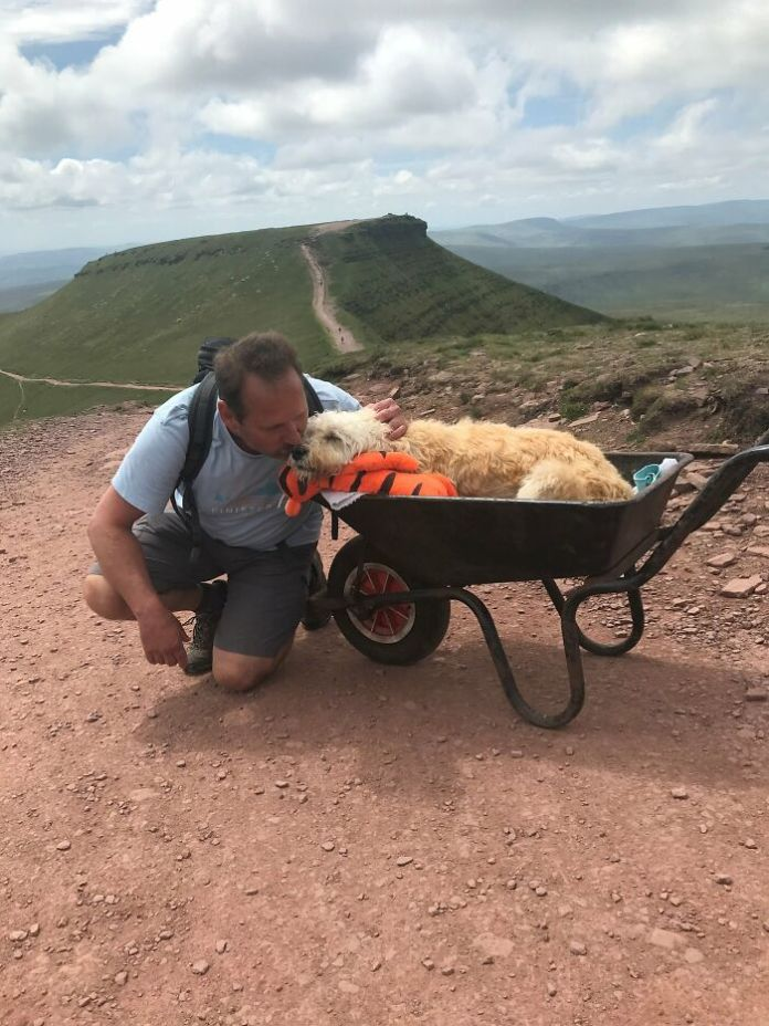 The heart-warming story of a man carrying his dog on his last adventure
