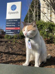 epworth security