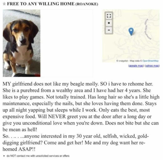 Girlfriend asks boyfriend, 'Either the dog goes, or I go' - Guy's answer wins the internet.