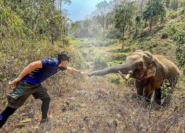 A Wild Elephant recognizes a Beautiful Moment The Veterinarian Who Treated Him 12 Years Ago.