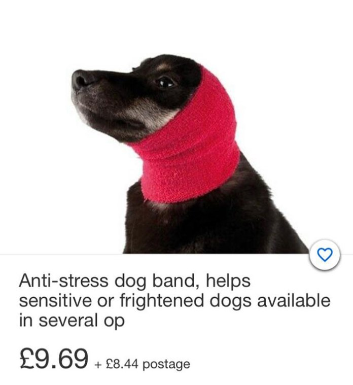 During The Fireworks Season, Here's A Clever Way To Keep Your Dogs Calm.